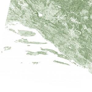 Dalmatia cropped